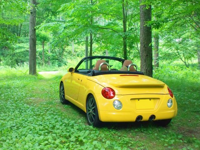軽自動車と普通車2